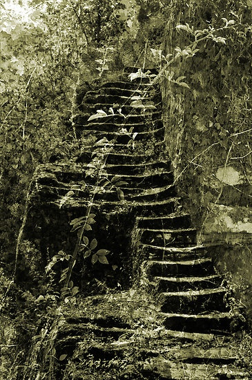 blog-image-ruins-stairs